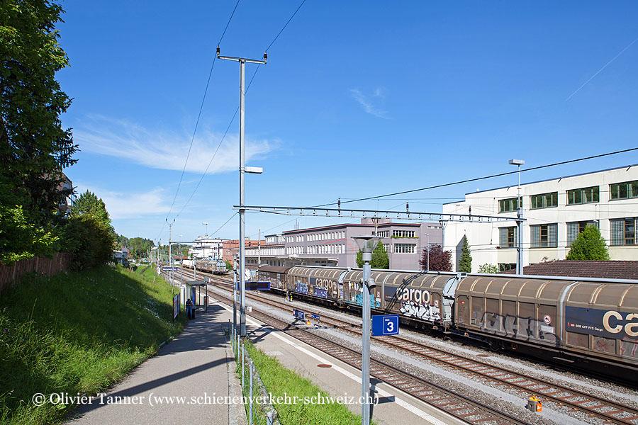 """Bahnhof """"Bischofszell Nord"""""""