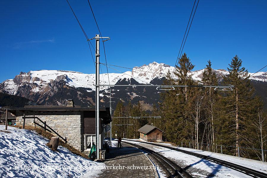 """Bahnhof """"Brandegg"""""""