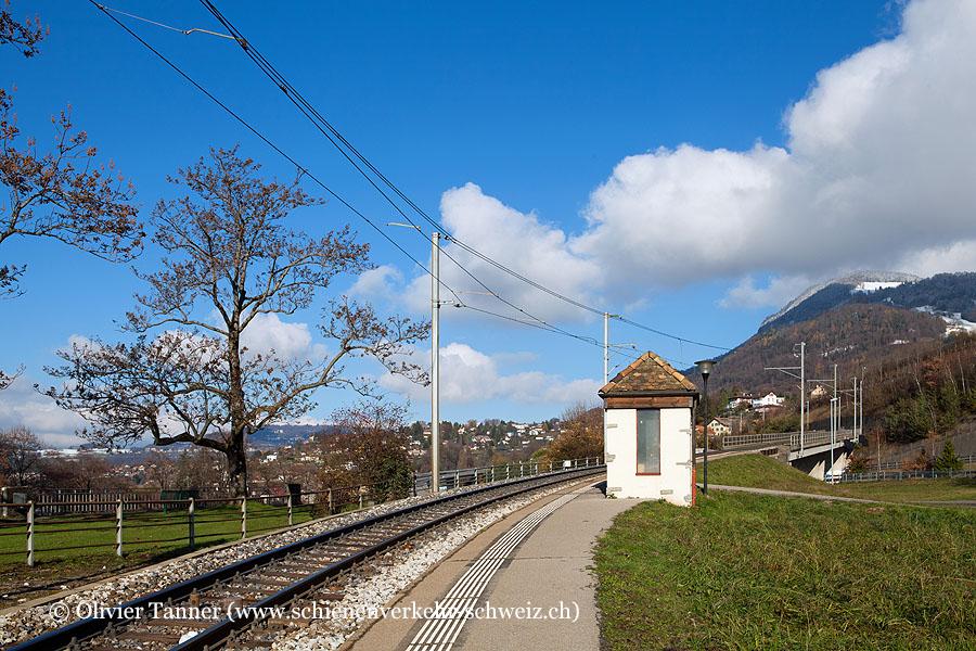 "Bahnhof ""Châtelard VD"""