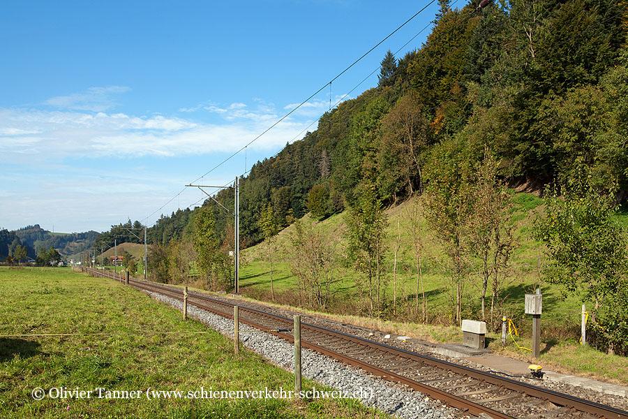 "Bahnhof ""Daiwil"""