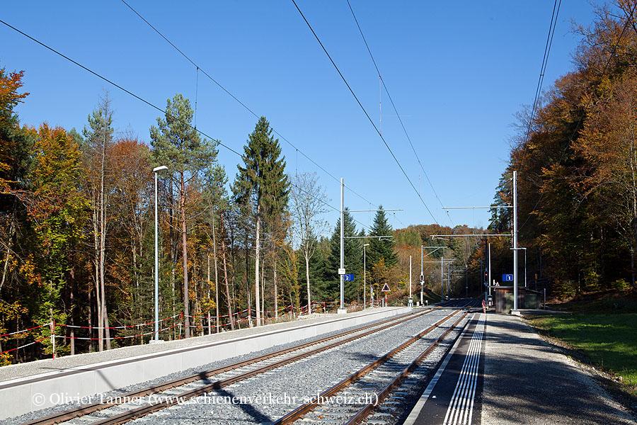 """Bahnhof """"Erdmannlistein"""""""