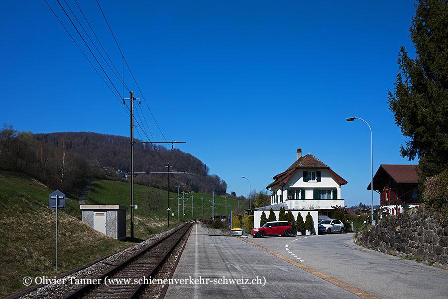 "Bahnhof ""Faulensee"""