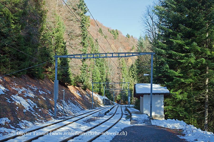 """Bahnhof """"Fontannaz-Seulaz"""""""