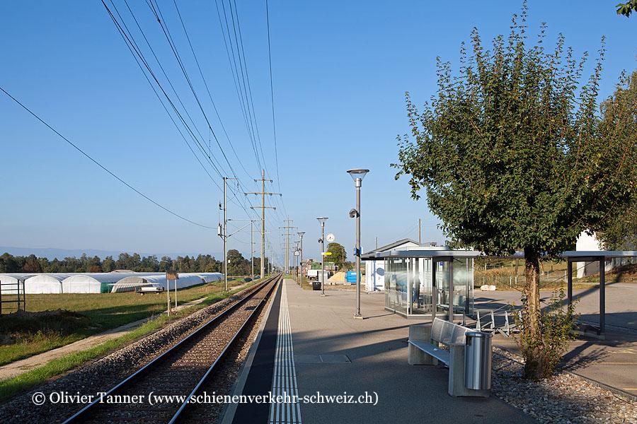 """Bahnhof """"Fräschels"""""""