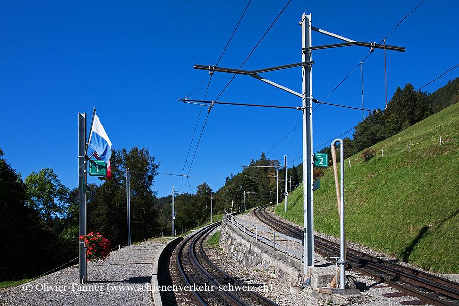 """Bahnhof """"Freibergen"""""""