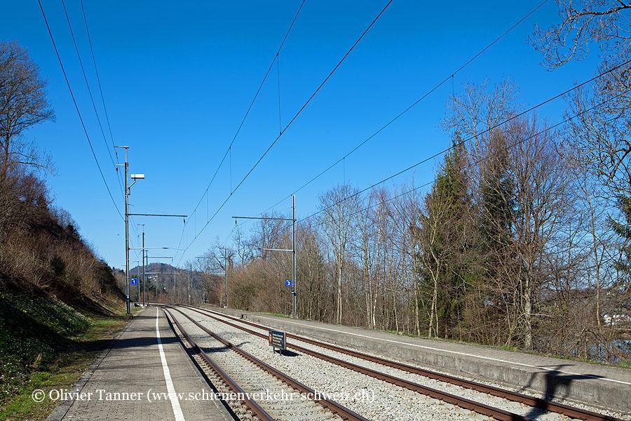 "Bahnhof ""Gübsensee"""