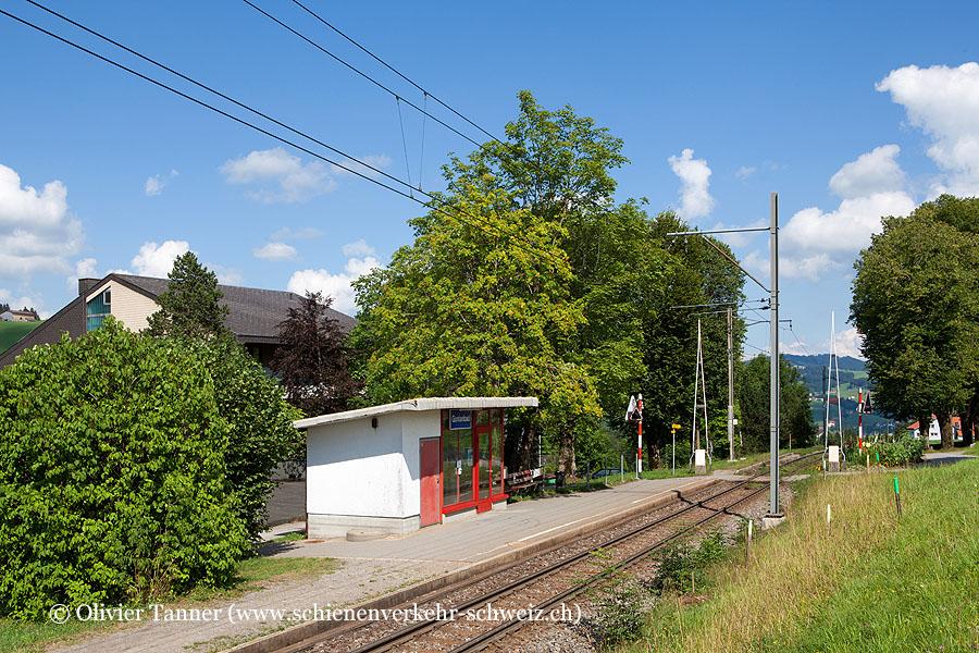 "Bahnhof ""Gontenbad"""
