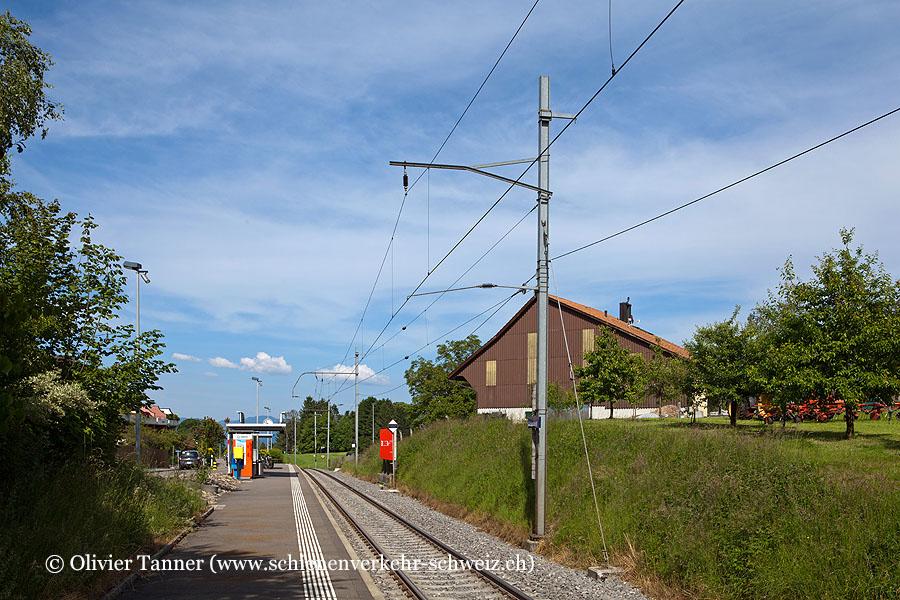 """Bahnhof """"Grüenfeld"""""""