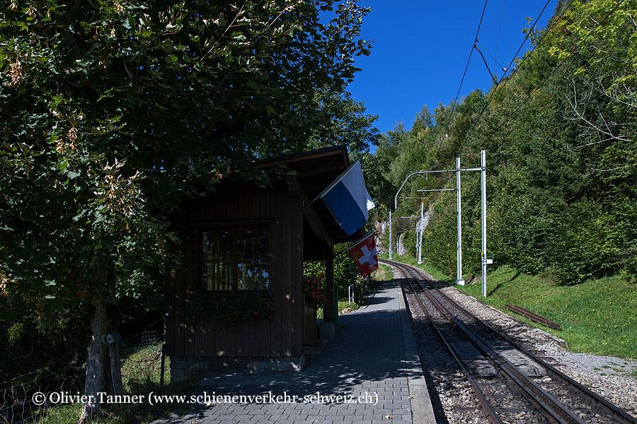 "Bahnhof ""Grubisbalm"""