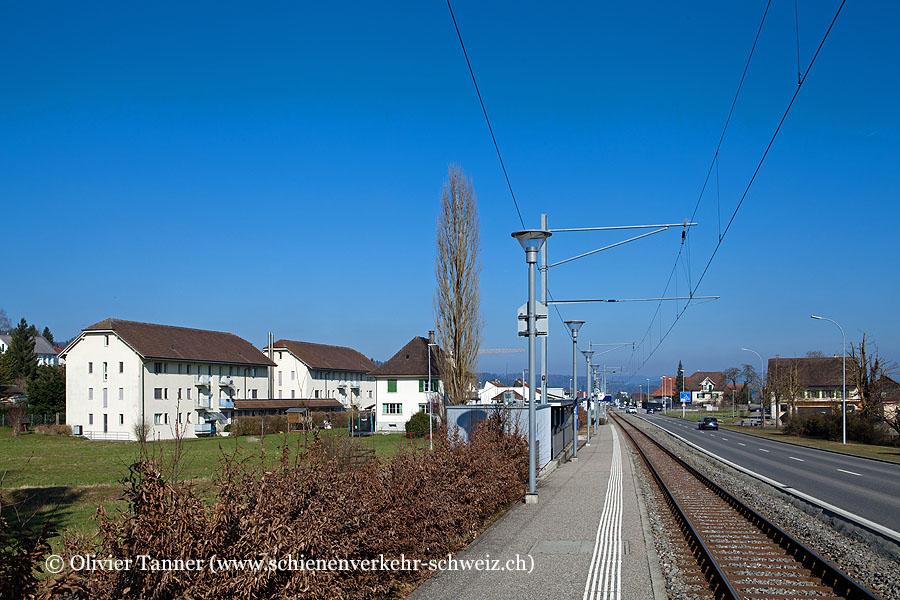 "Bahnhof ""Hallwil"""