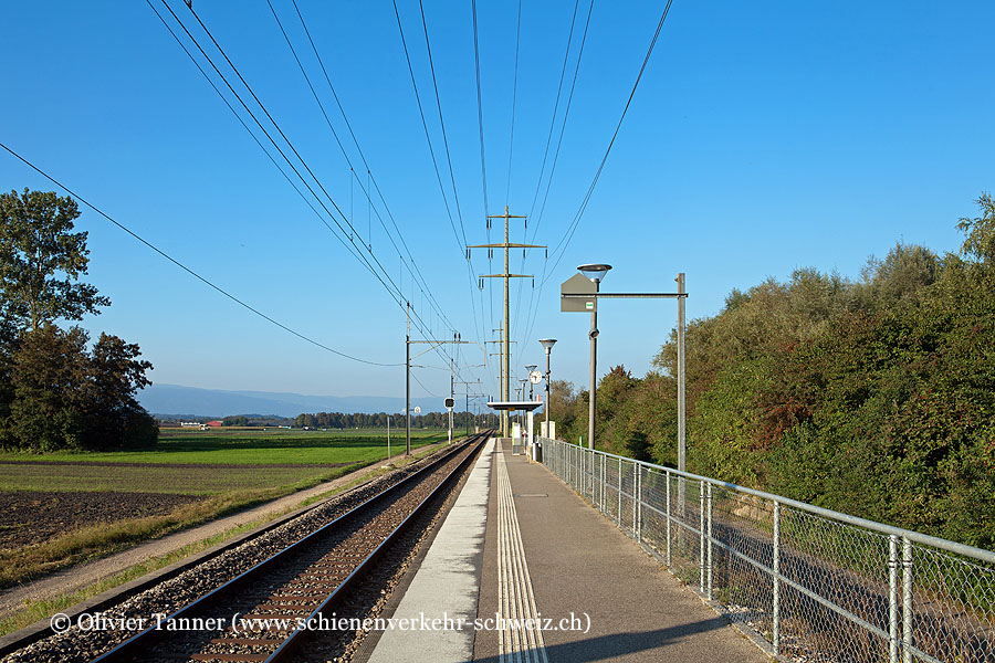 "Bahnhof ""Kerzers Papiliorama"""