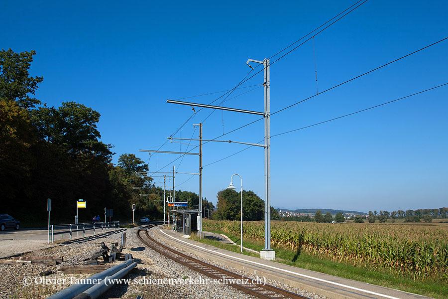 """Bahnhof """"Lüscherz"""""""