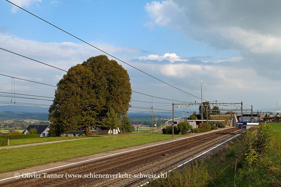 """Bahnhof """"Mühlau"""""""