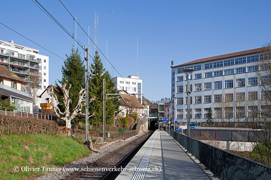 "Bahnhof ""Neuhausen Rheinfall"""