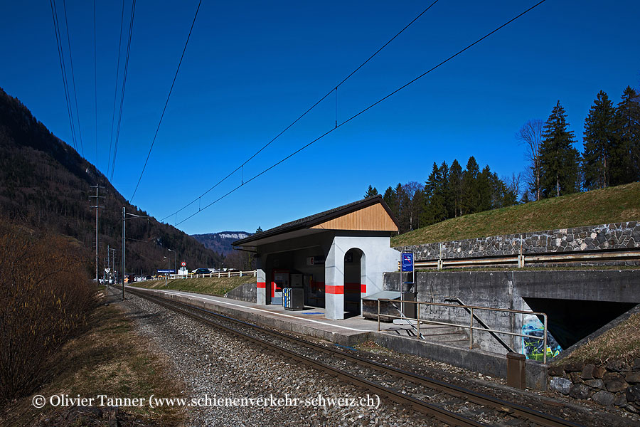 "Bahnhof ""Niederrickenbach Station"""