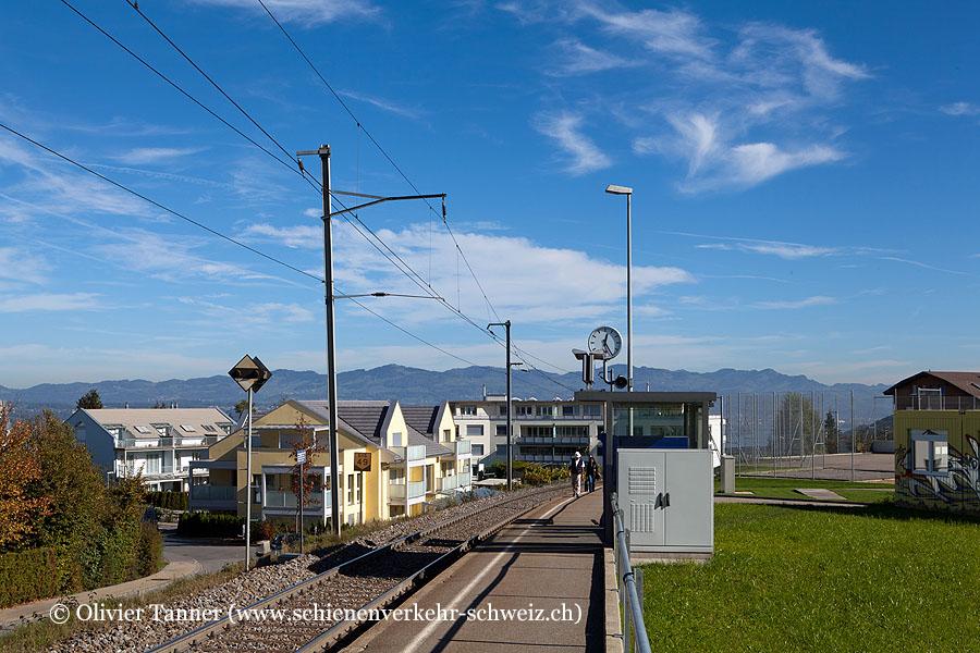 "Bahnhof ""Riedmatt SZ"""