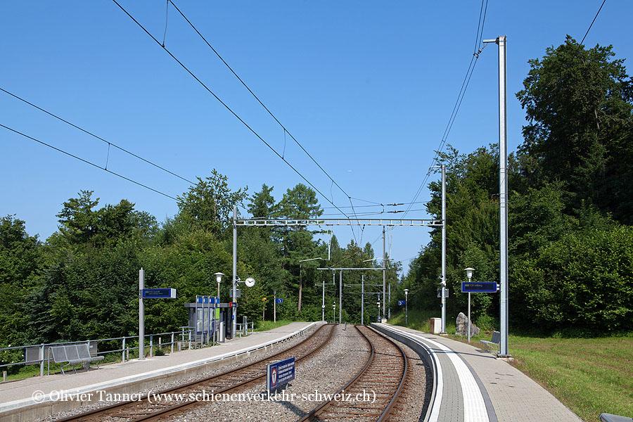 """Bahnhof """"Ringlikon"""""""