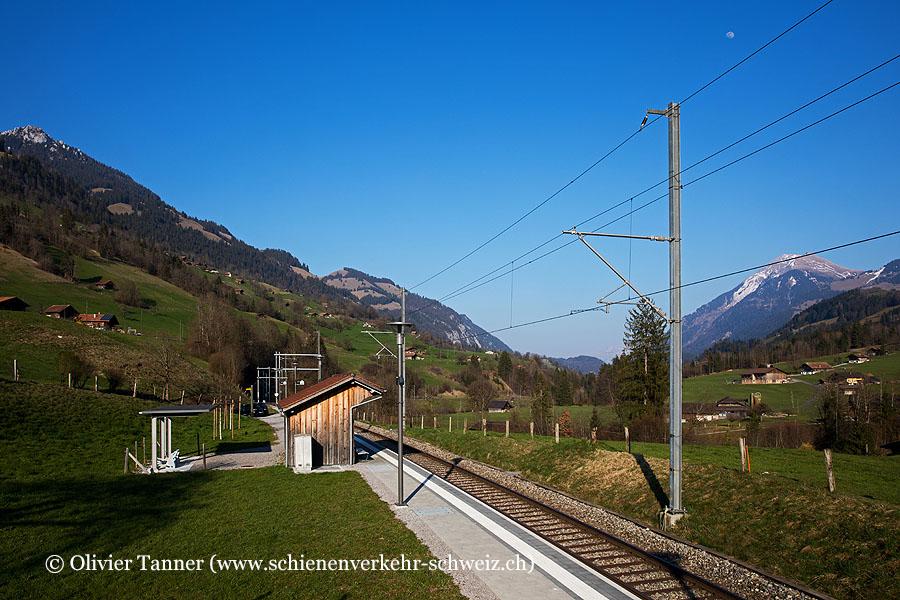 """Bahnhof """"Ringoldingen"""""""