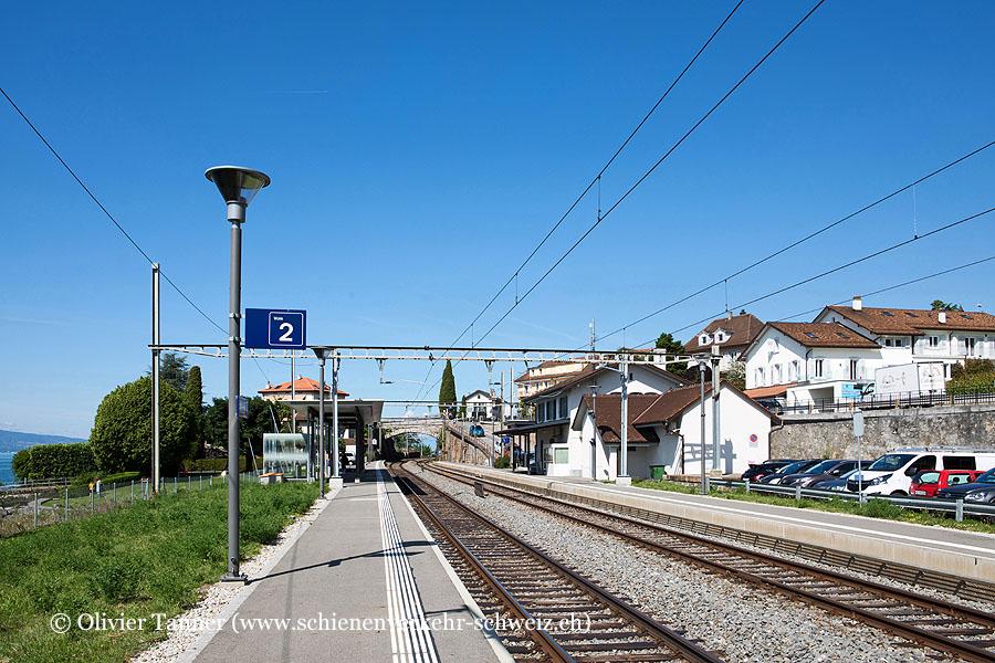 "Bahnhof ""Rivaz"""
