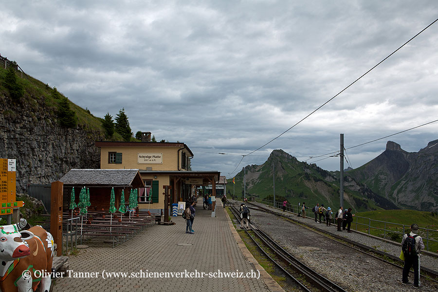 "Bahnhof ""Schynige Platte"""