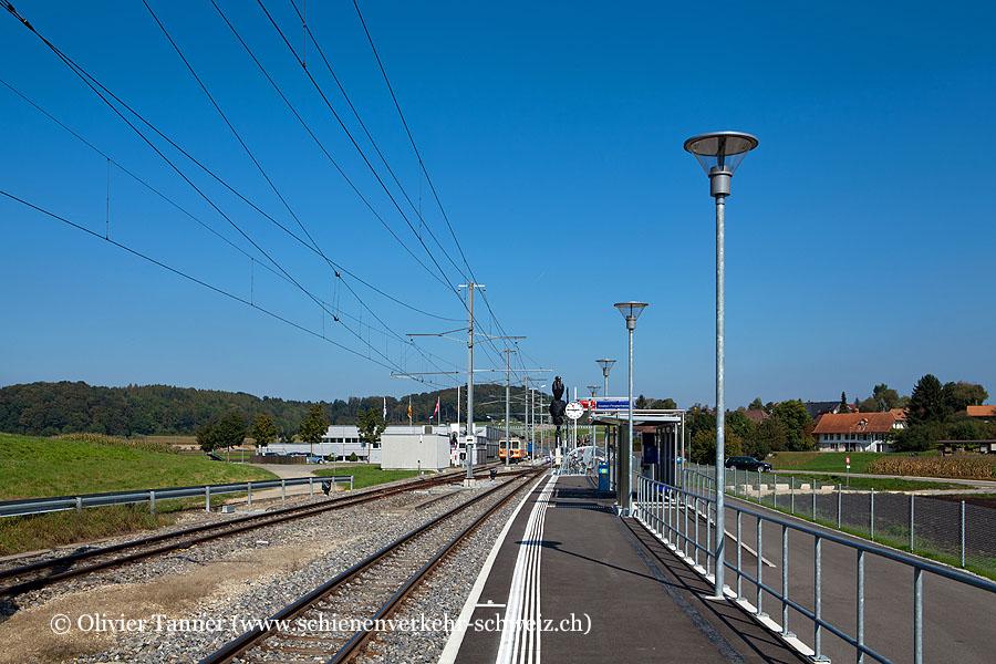 """Bahnhof """"Siselen-Finsterhennen"""""""