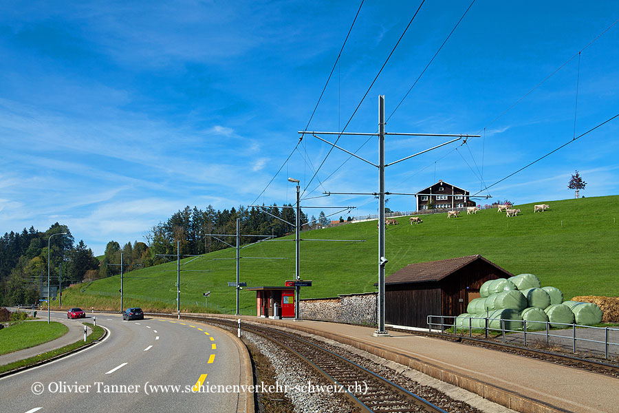 """Bahnhof """"Steigbach"""""""