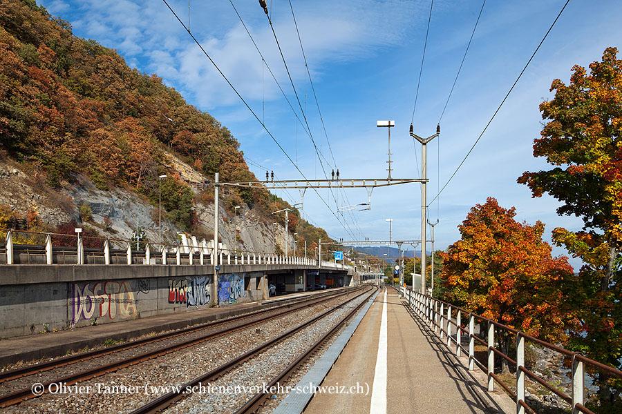 """Bahnhof """"Tüscherz"""""""