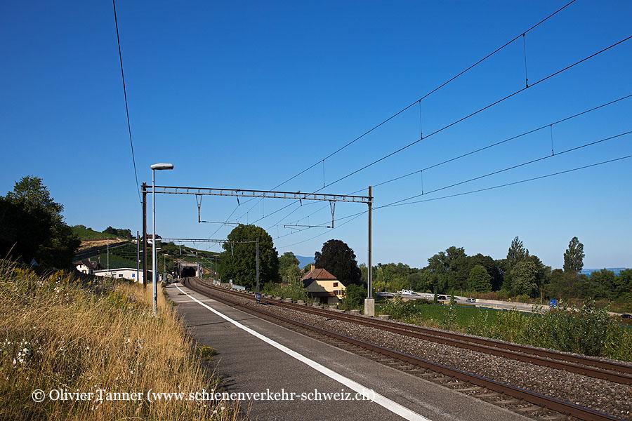 """Bahnhof """"Vaumarcus"""""""
