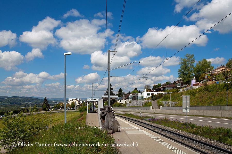 """Bahnhof """"Widen Heinrüti"""""""