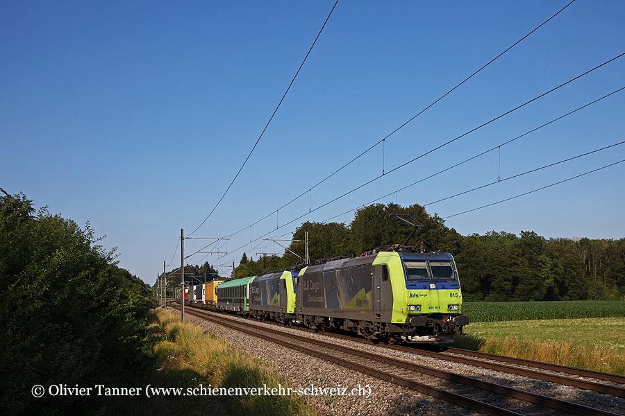 Re 485 015 und Re 485 019 mit einem RoLa-Güterzug