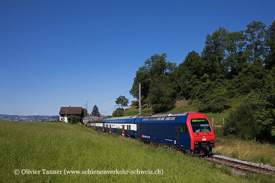 Re 450 029 als S7 Winterthur – Zürich HB – Meilen – Rapperswil