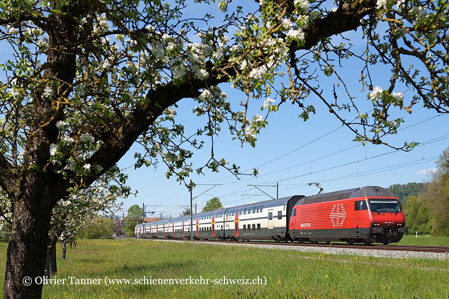 Re 460 042 mit IR Basel – Luzern