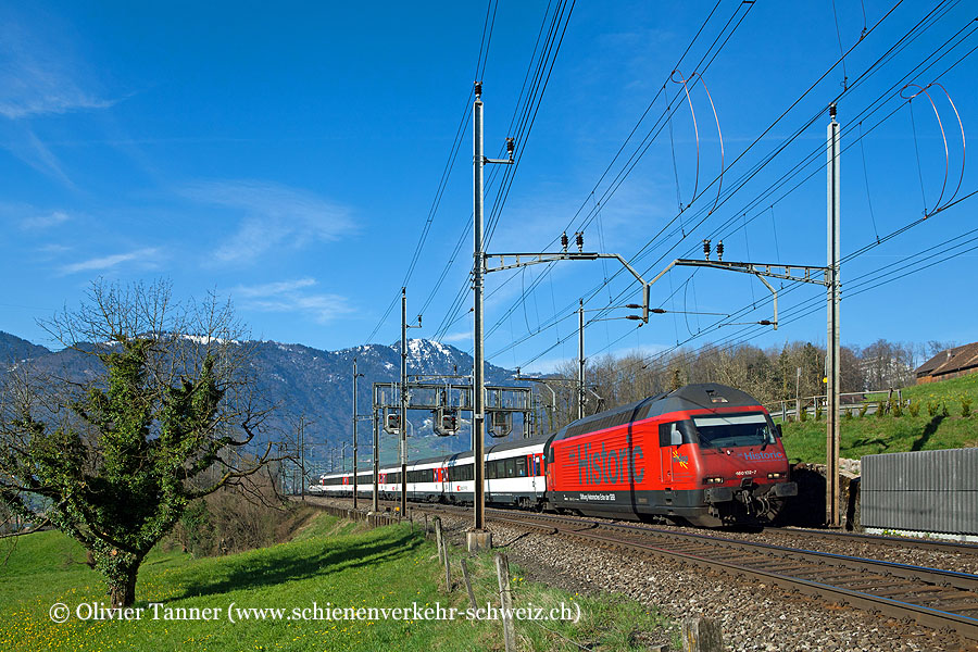 Re 460 102 ''Historic'' mit Gotthard-IR