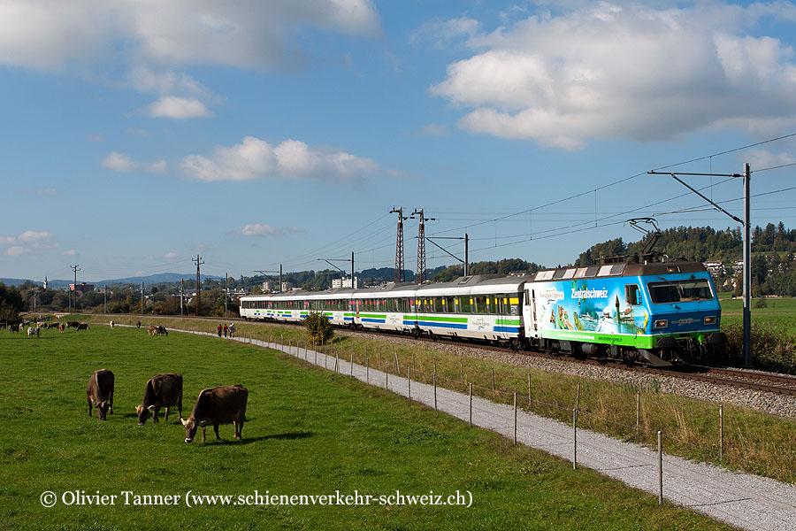 Re 456 096 ''Voralpen-Express'' mit dem Voralpen-Express Luzern – Romanshorn