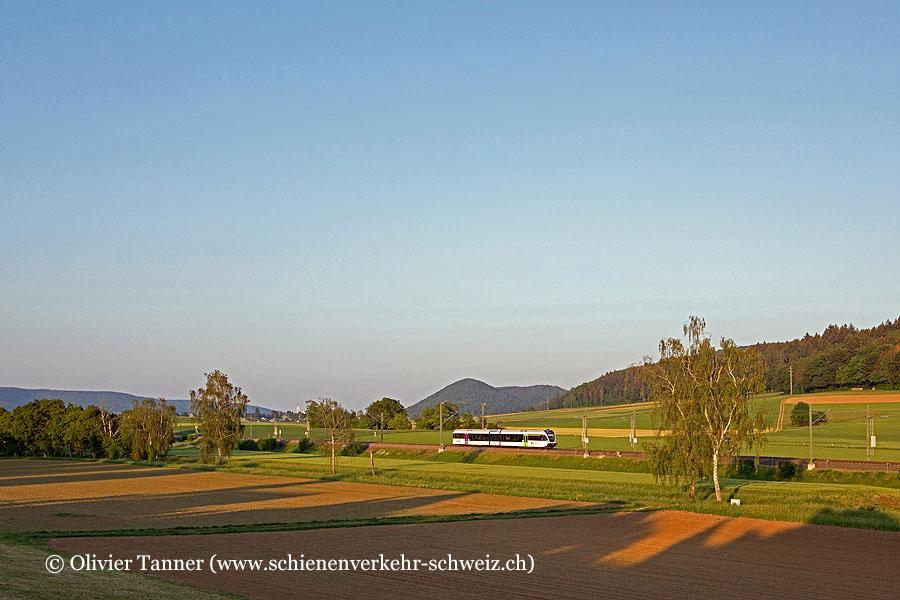 RABe 526 732 als S-Bahn Schaffhausen – Erzingen (Baden) im allerletzten Abendlicht