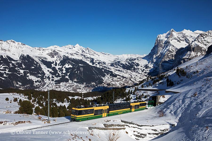 Bhe 4/8 144 und Bhe 4/8 141 ''Coop Naturaplan'' als Regio Grindelwald – Kleine Scheidegg
